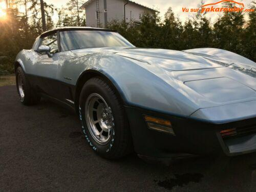 Photo de CHEVROLET/CORVETTE/1982-19