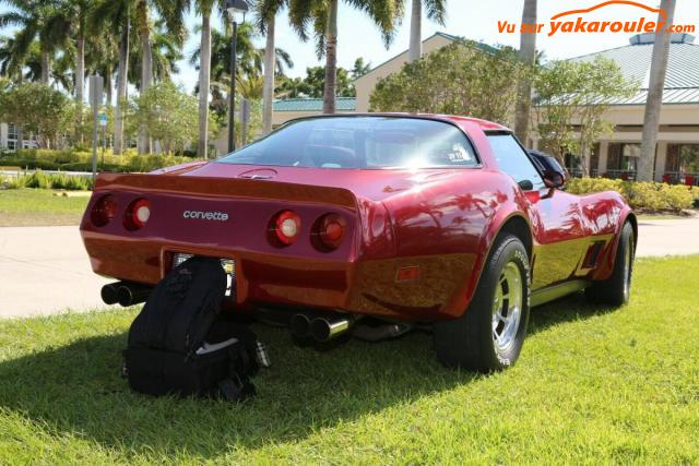 Photo de CHEVROLET/CORVETTE/1981-tout-inclus-1