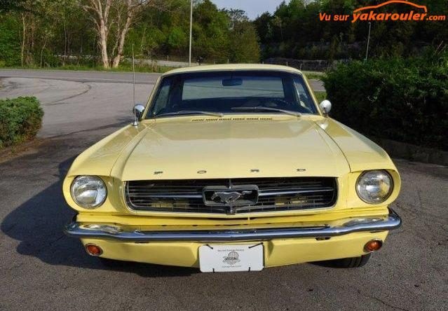 Photo de FORD/MUSTANG/1965-tout-inclus-12