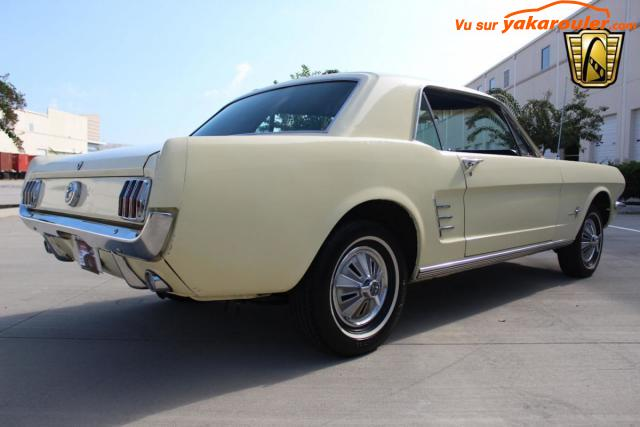Photo de FORD/MUSTANG/1966-27